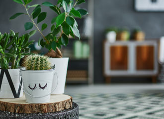 End Table House Plant Spruce